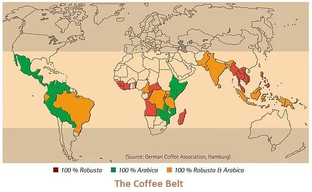 dünyada kahve üreten ülkeler
