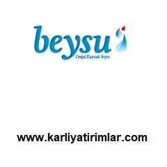 beysu-su-bayilik-franchise-karliyatirimlar.com