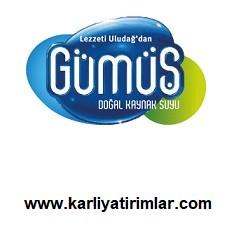 gumus-su-bayilik-franchise-karliyatirimlar.com