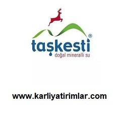 taskesti-su-bayilik-franchise-karliyatirimlar.com