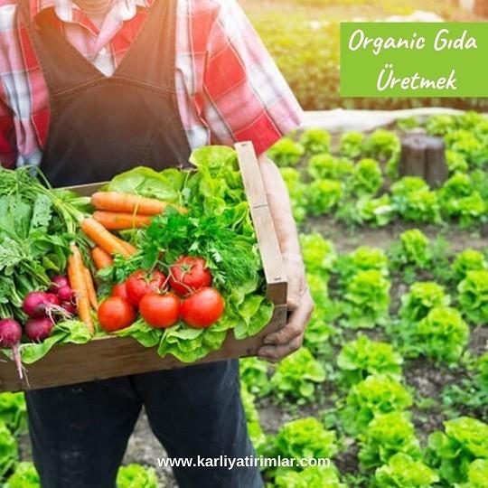 evden-yapilabilecek-isler-organik-urunler-uretmek