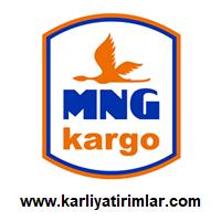 mng-kargo-bayilik-karliyatirimlar.com