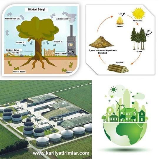 yenilenebilir-enerji-kaynaklari-biyoenerji